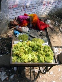 Hard work at grape stand (on the way to Chitrakoot, Mar. 2009)
