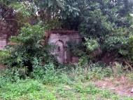 Lost Gardens: Pateriya ka Bagh
